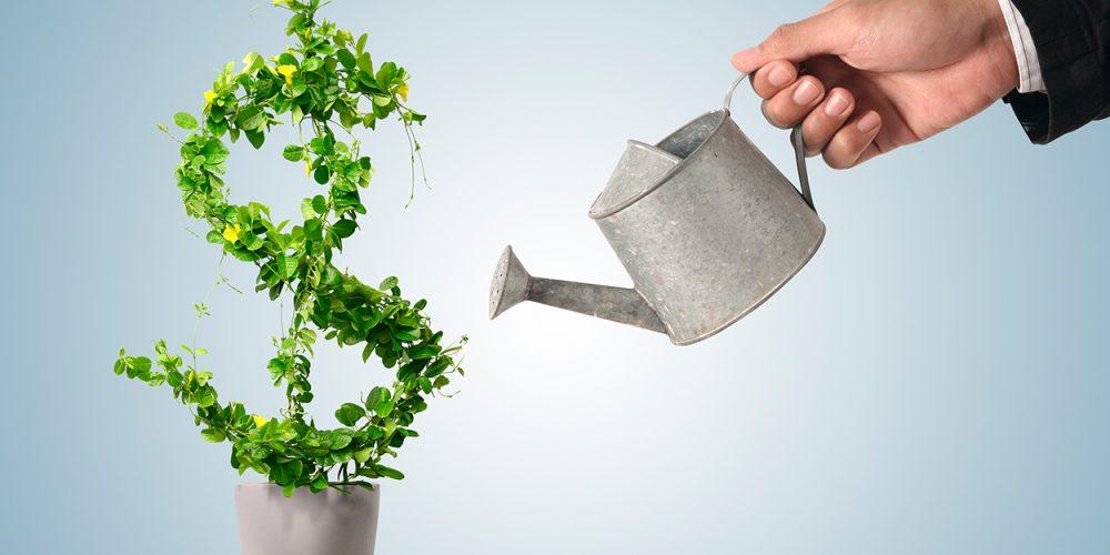 Investimento ou desperdício?